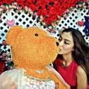 Gallery Teddy Bear1